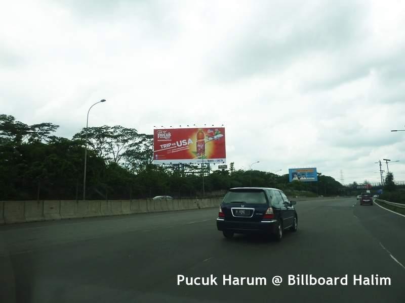 Pucuk-Harum-Halim